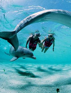 Фото №3 - Люди океана