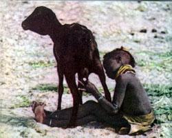 Фото №2 - Люди каменистой пустыни
