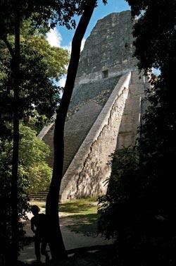 Фото №8 - Несгинувшие майя