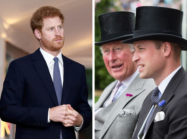 Фото №1 - Иллюзия свободы: почему Гарри считает, что Уильям и Чарльз находятся «в ловушке»