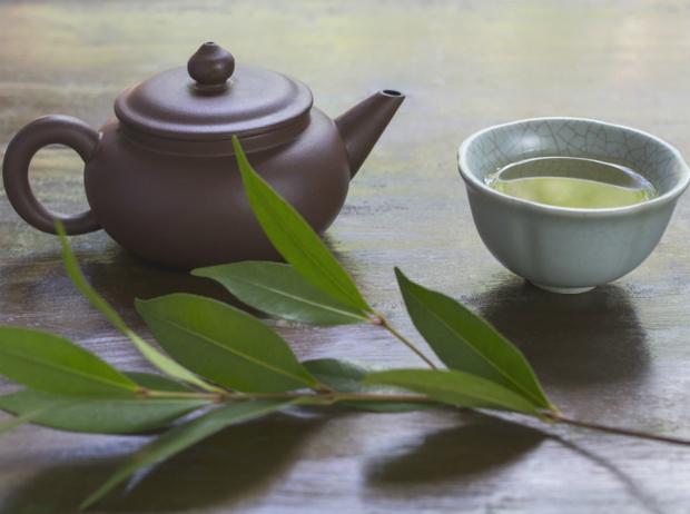Фото №6 - Чайные плантации: как создается самый популярный напиток