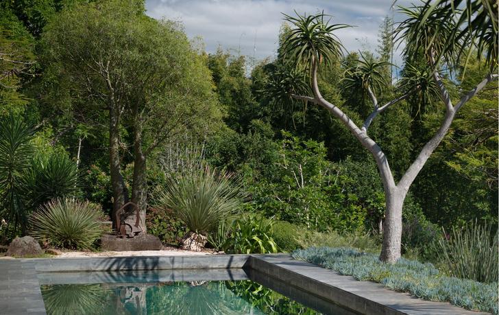 Фото №1 - Тропический сад в Австралии