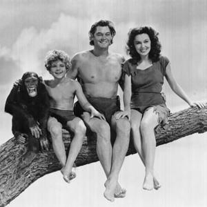 Фото №1 - Биография шимпанзе претендует на награду