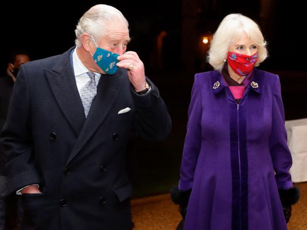 Фото №2 - «Напряжение и гнев»: что не так с новым официальным портретом герцогини Камиллы
