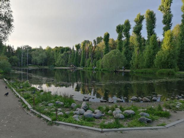 Фото №1 - В Екатеринбурге начали искать волонтеров на решение проблем городской среды