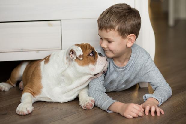 Фото №4 - «Мам, хочу собаку!» 7 веских причин завести ребенку питомца