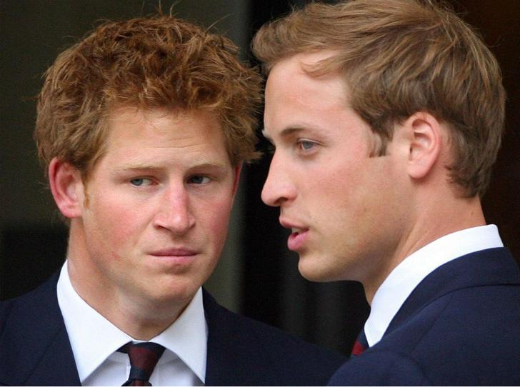 Фото №3 - Последний рубеж: как Гарри и Уильям делят наследие принцессы Дианы