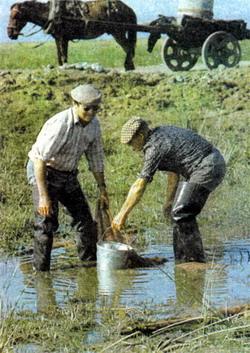 Фото №2 - Рыбалка в Тишкове