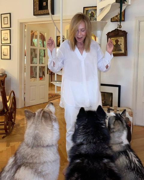 Фото №33 - Домашние животные звезд: собаки, кошки, лемуры, свиньи и даже улитки!