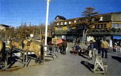 Фото №3 - Восхождение на Фудзи