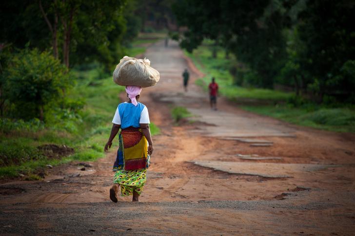 Фото №3 - Здесь не обитают львы: 60 лет независимому Сьерра-Леоне