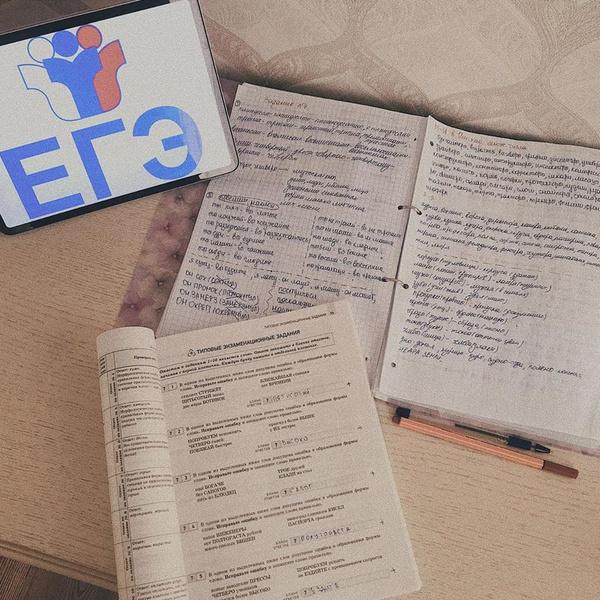 Фото №1 - Как писать сочинение ЕГЭ: 10 советов