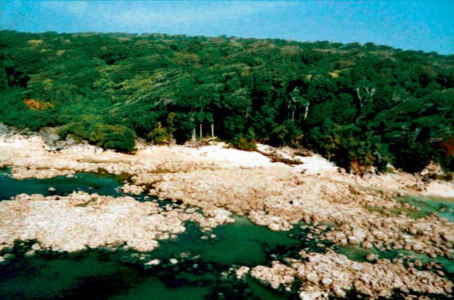 Фото №4 - Последний остров на Земле, где обитают первобытные люди