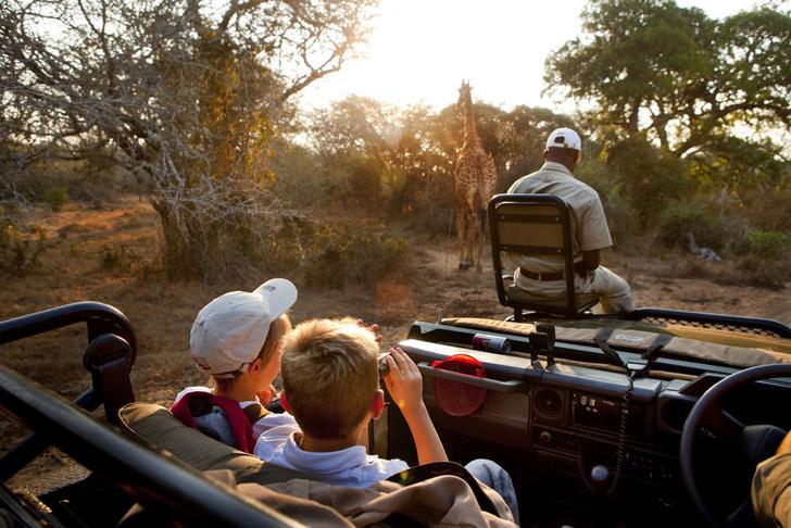 Фото №3 - Язык слонов и львов: словарь рейнджера ЮАР