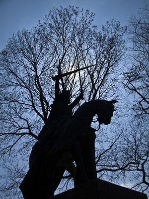 Фото №3 - «Ящерицы» против северных крестоносцев