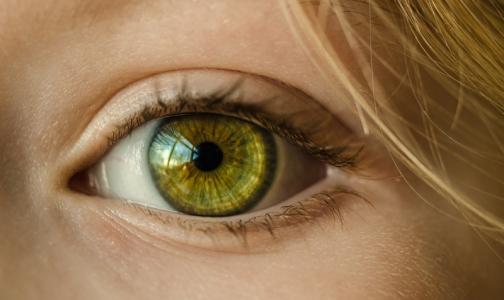 Фото №1 - Петербургский врач назвал пять самых распространенных у россиян болезней глаз