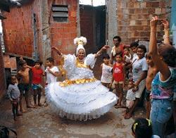 Фото №6 - Бразильский микс