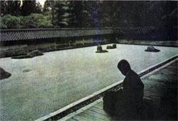 Фото №5 - Каратэ начинается с поклонов