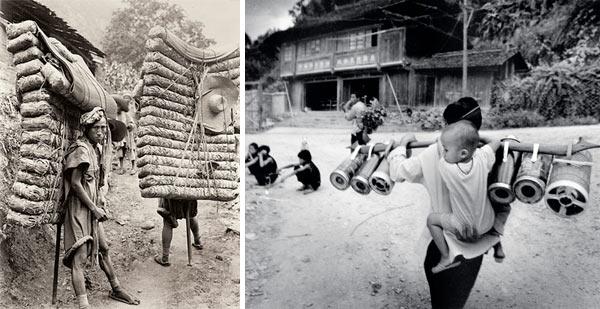 Фото №2 - Китайский улун