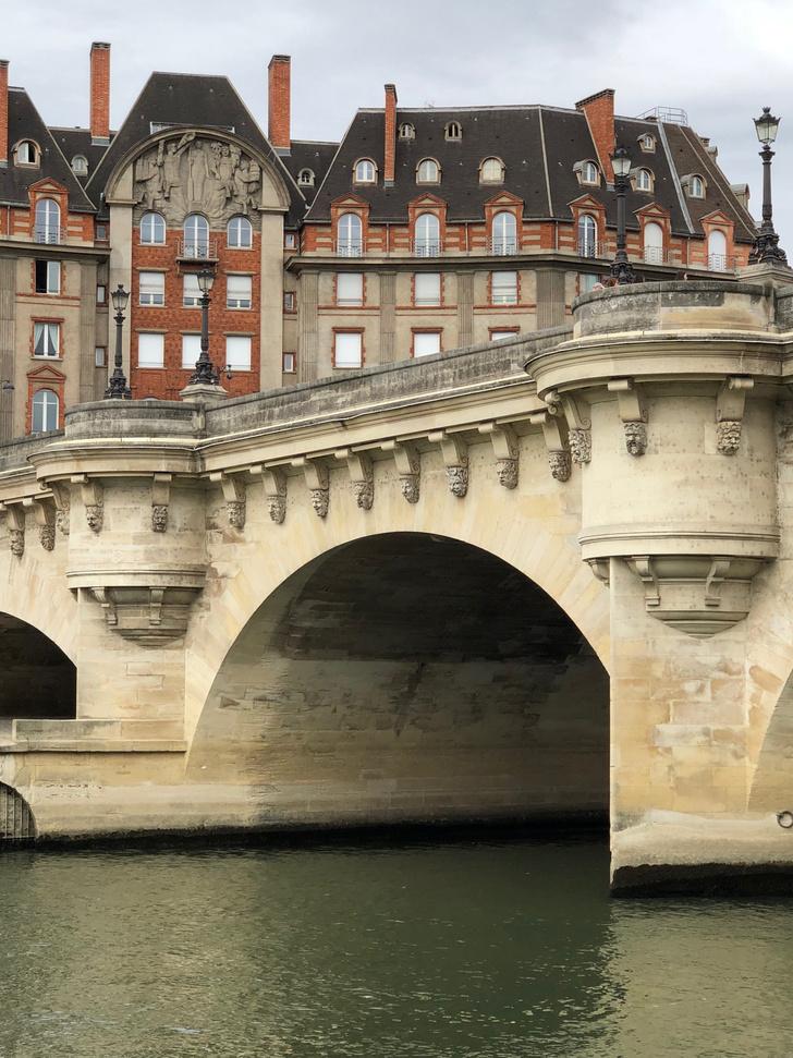 Фото №3 - Парижская квартира с видом на Лувр