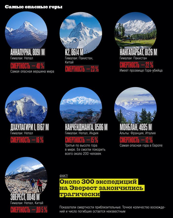 Фото №15 - Инфографика: на пике славы
