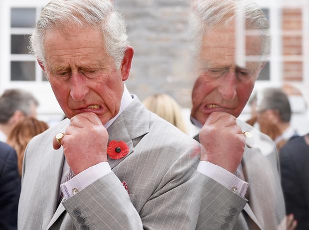 Фото №5 - Ничто не вечно: «умрет» ли британская монархия вместе с королевой?