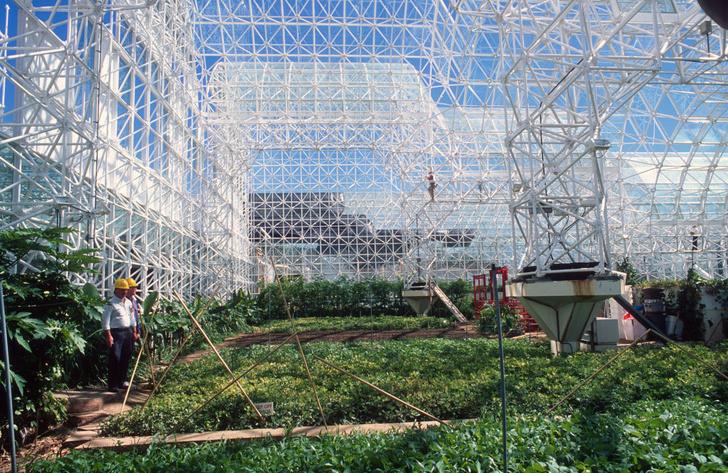 Фото №2 - «Биосфера-2»: двухлетний эксперимент по выживанию в замкнутой среде, который провалился