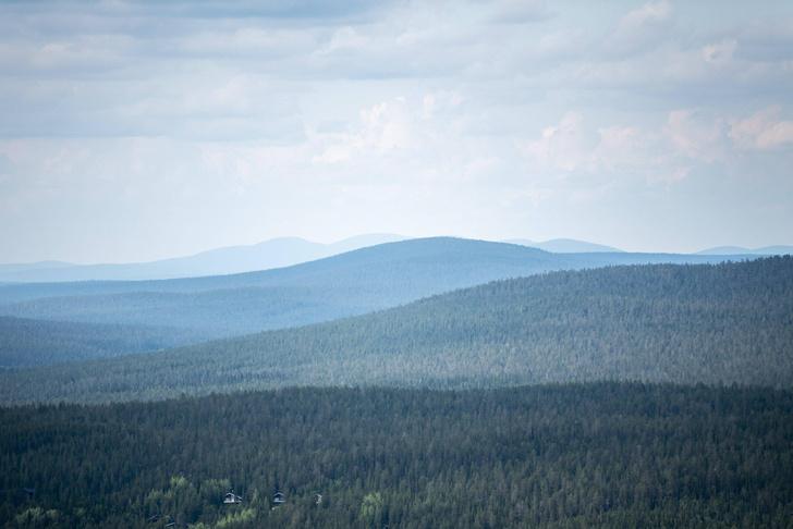 Фото №1 - В Лапландии зафиксирована самая высокая температура за 100 лет