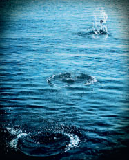 Фото №1 - Почему брошенный камень отскакивает от поверхности воды?