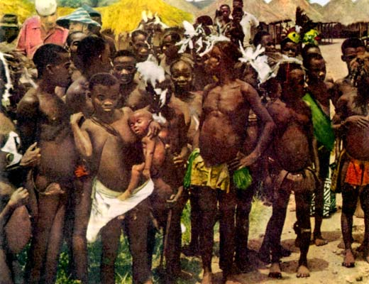 Фото №1 - Люди леса