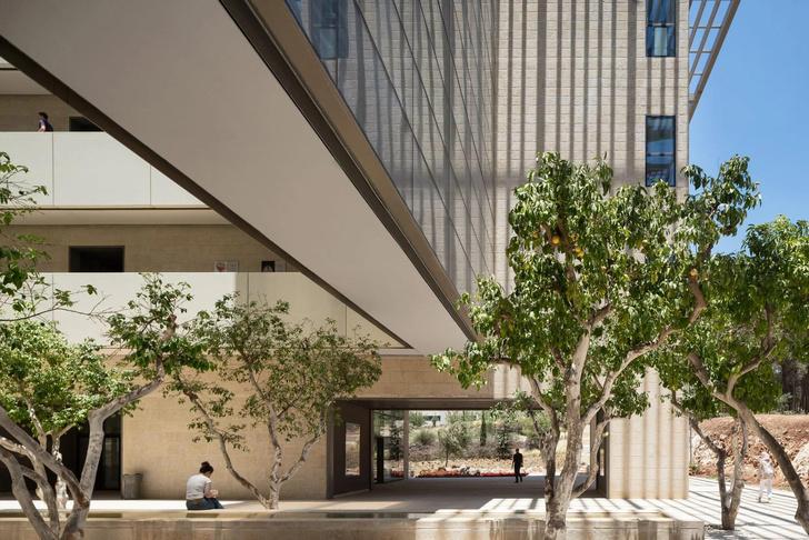 Фото №6 - Центр исследования мозга в Израиле по проекту Foster + Partners