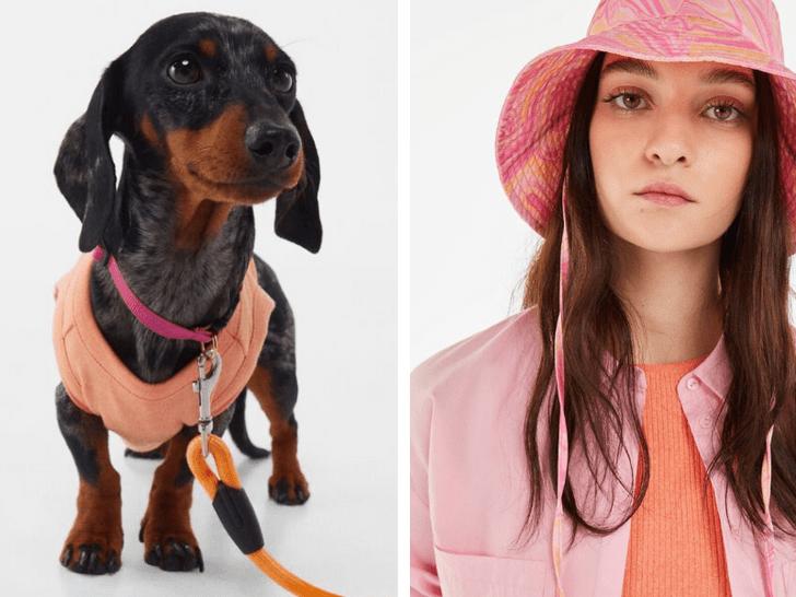 Фото №1 - Друзья на выгуле: Bershka выпустила коллекцию одежды для тебя и твоей собаки 😋