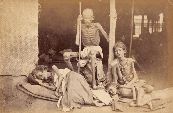 Фото №2 - Мадрасский мор: история Великого голода в Индии 1876–1878 годов в фотографиях