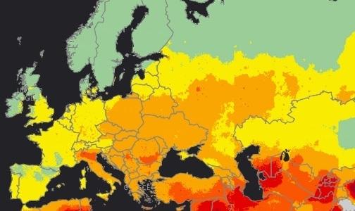 Фото №1 - ВОЗ: Только 8% населения планеты дышит чистым воздухом