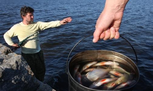 Фото №1 - Роспотребнадзор рассказал, как надо готовить рыбу, чтобы не съесть живого паразита