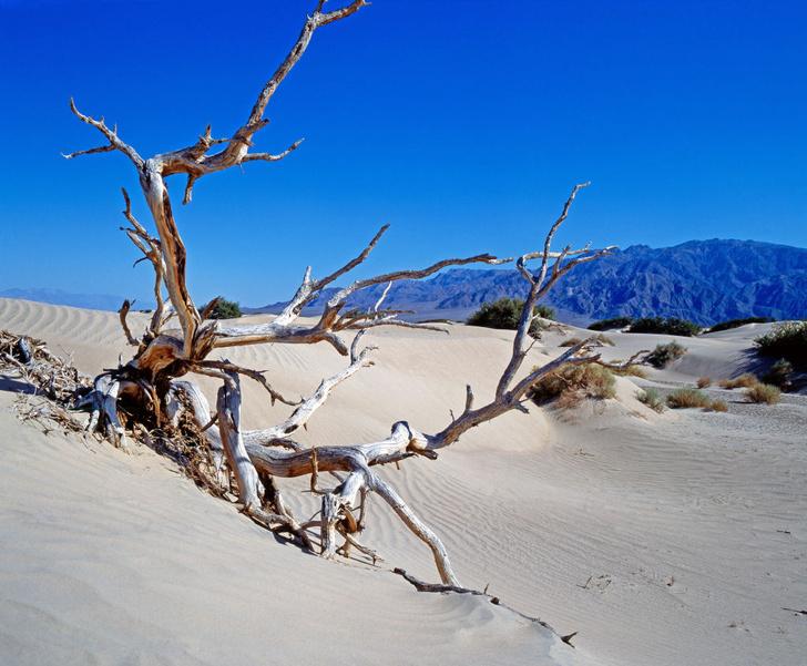 Фото №1 - Какое место на Земле самое жаркое?