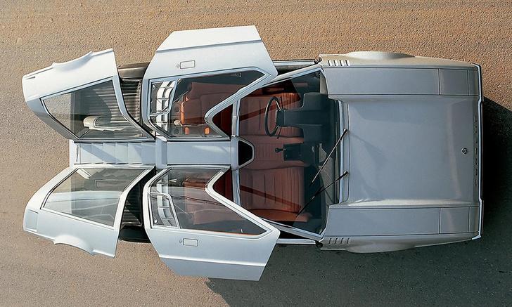 Фото №1 - Крылья чайки, крылья сокола: самые странные автомобильные двери