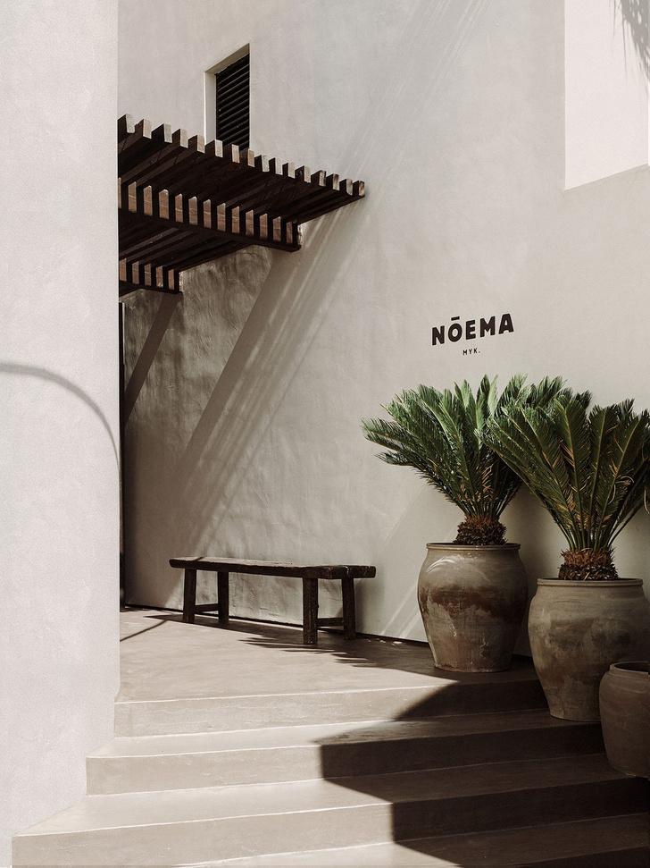 Фото №2 - Ресторан Nōema на греческом острове Миконос