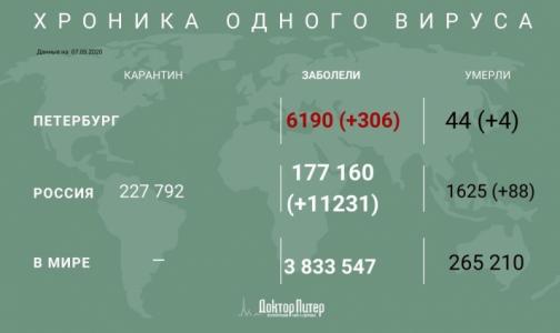 Фото №1 - Более 11 тысяч случаев заражения коронавирусом зафиксировано за сутки в России