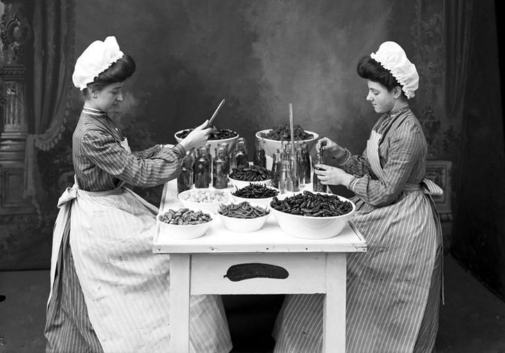 Фото №3 - История соленого огурца и два традиционных рецепта 1909 года
