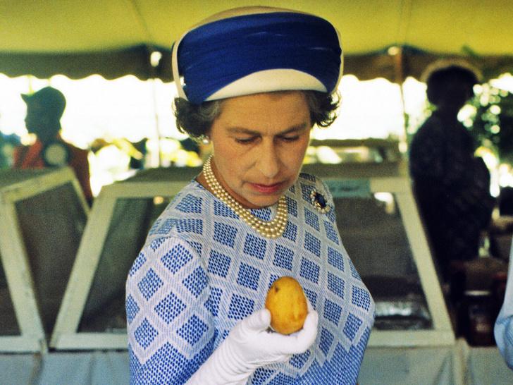 Фото №1 - Самая странная традиция Виндзоров, связанная с едой