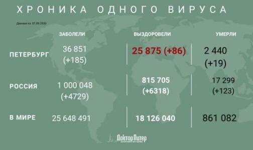 Фото №1 - Число заразившихся коронавирусом в России превысило миллион человек