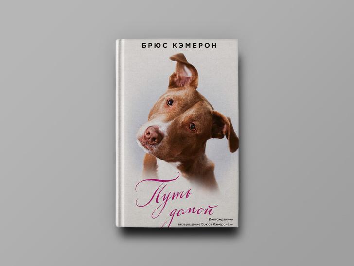 Фото №1 - Лучший друг человека: 10 увлекательных книг о собаках
