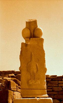 Фото №3 - Эхо античного карканья