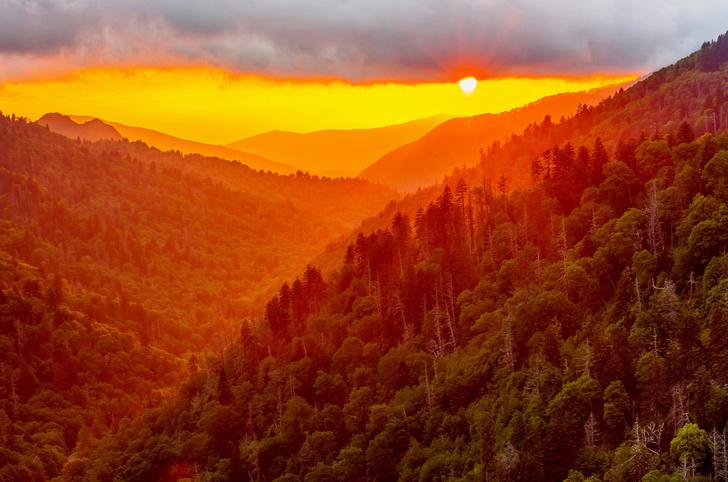 Фото №5 - Впадая в крайности: 10 самых необычных национальных парков на планете