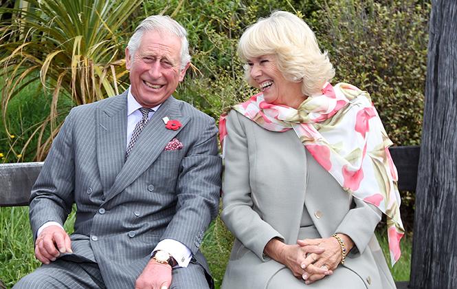 Фото №16 - Принц Чарльз и его Камилла: двое против всех