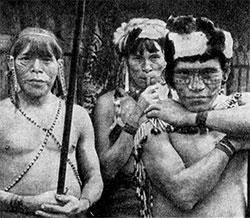 Фото №3 - Люди джунглей