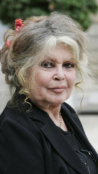 Фото №3 - Тогда и сейчас: как сегодня выглядят самые красивые французские актрисы
