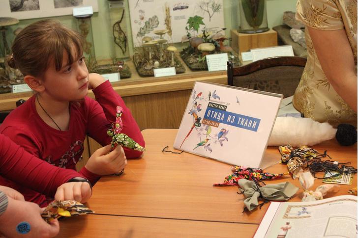 Фото №1 - Биологический музей приглашает на экологический праздник «День птиц»