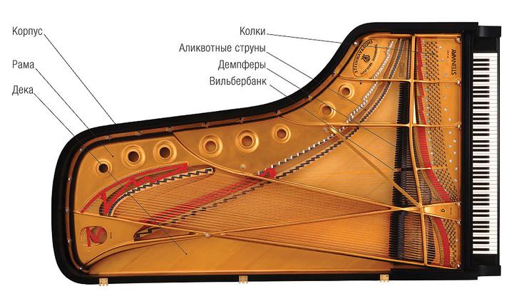 Фото №4 - Пианиссимо: как устроен лучший в мире рояль